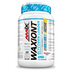 Waxiont Amix Performance 1kg 20 serv